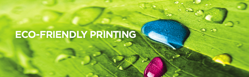 Eco-Friendly Printing Marketing Strategies for Small Businesses
