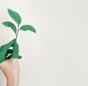 10 Green Business Ideas For Entrepreneurs