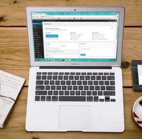 5 WordPress Plugins to Optimize Your WP Site
