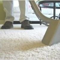 Kingwood TX Carpet Care - Kingwood, Texas, 77339, USA ...