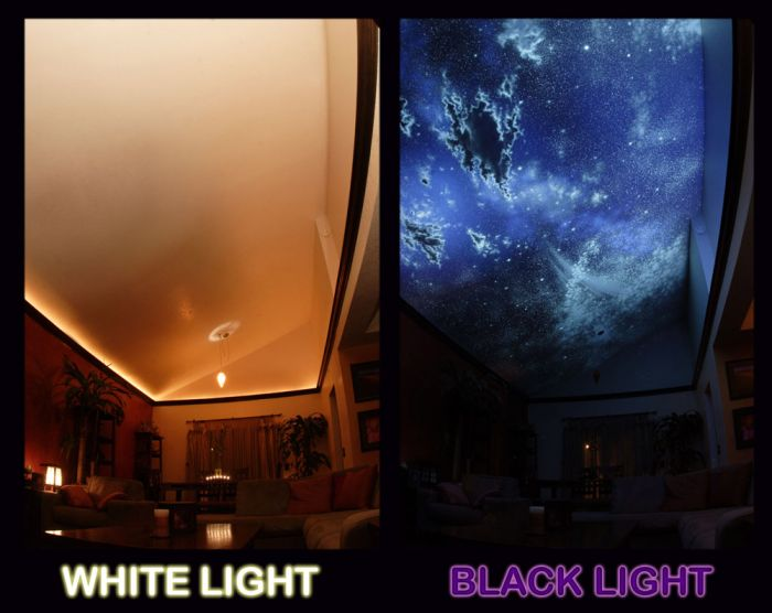 Hidden Night Sky Invisible Black Light Living Room  Mural