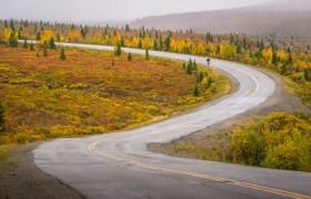 POW: Driving in Denali National Park