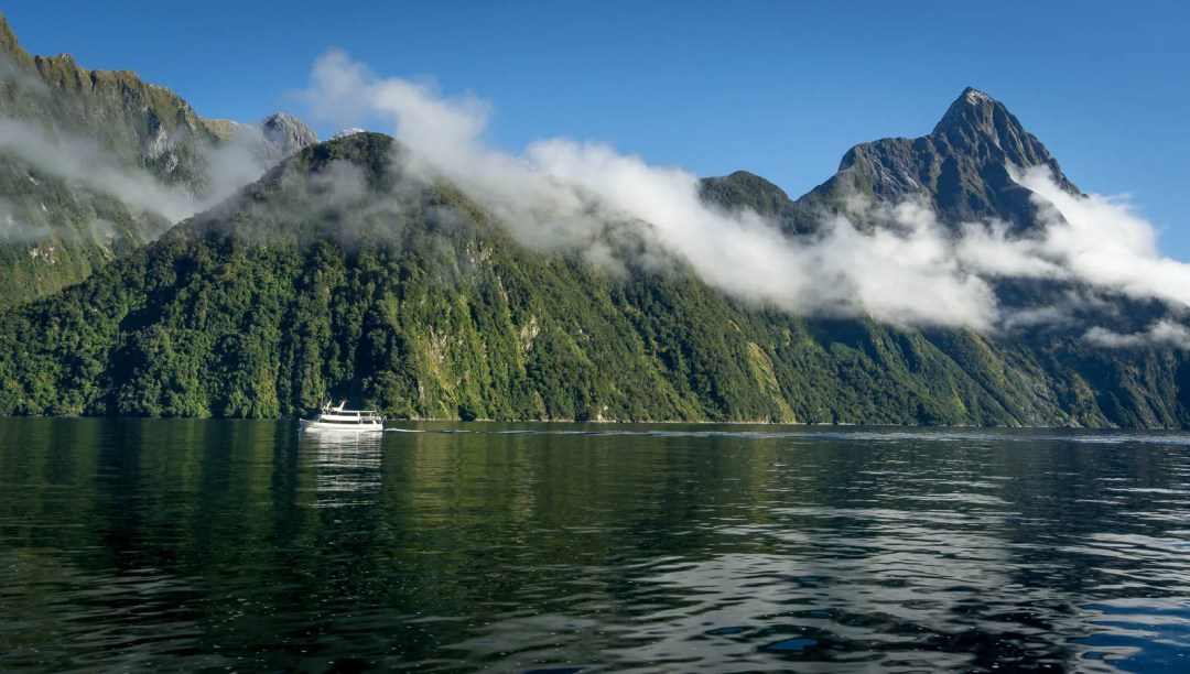 High walls of Milford Sound fjord