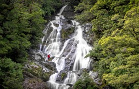 POW: The Streamy Water of Fantail Falls