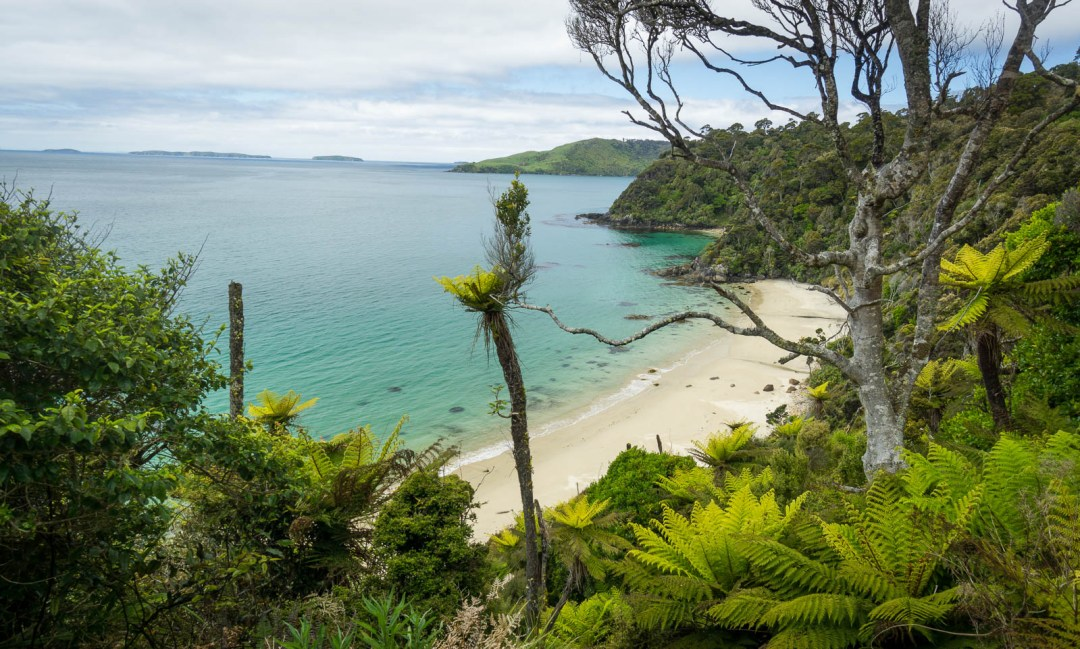 Beach and turquoise water on Stewart Island