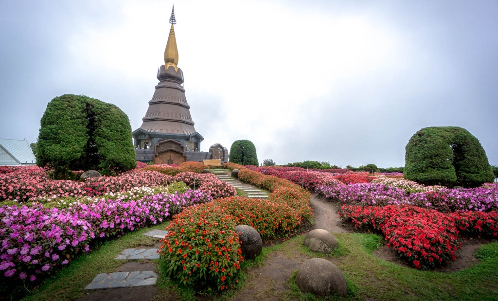 Colourful bushes and path leading to King Stupa