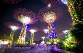 POW: Super Trees in Singapore