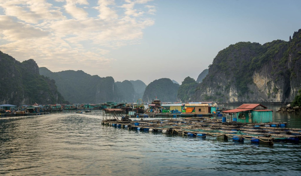 Floating houses on Cat Ba