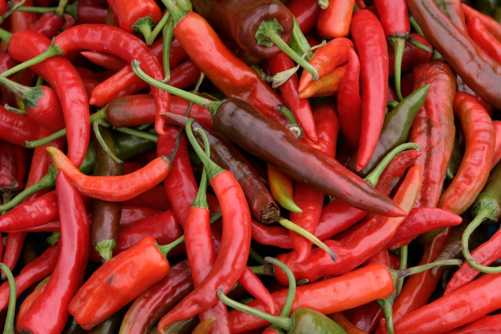 Bhutan favorite chilli