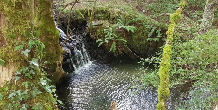 Ideas para disfrutar de un finde en la naturaleza: