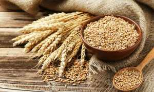 Wheat allergy Symptoms-What is Wheat Allergy