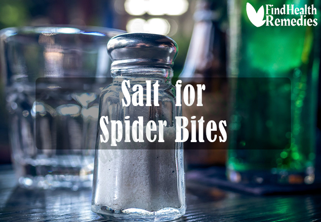 salt-for-spider-bites