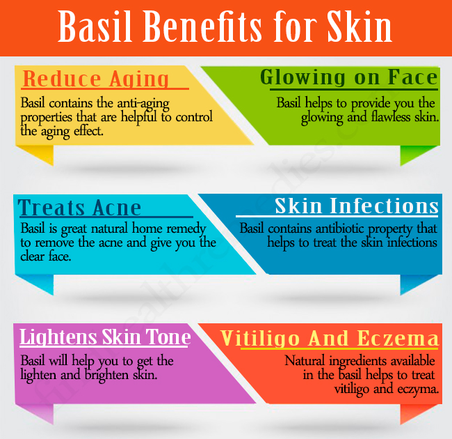 Benefits of Basil for Skin