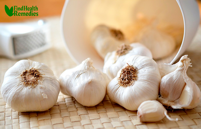 Garlic for Ticks