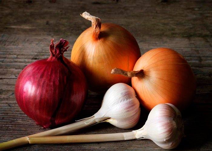 Garlic and Onion for Phlebitis