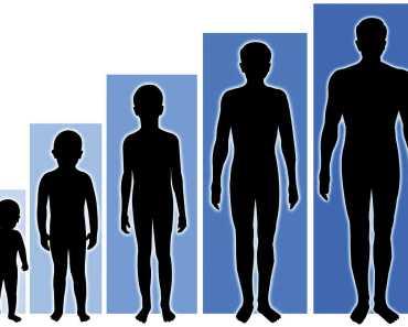 Grow Tall