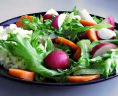 Healthy Vegetarian Diet
