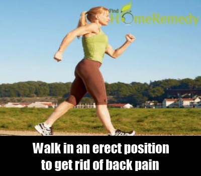 walk in an erect position