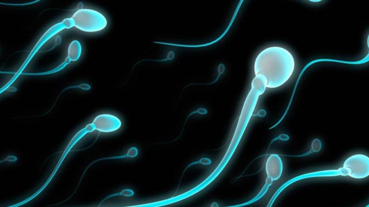 6 Yoga Exercises To Increase Sperm Count - How To Increase