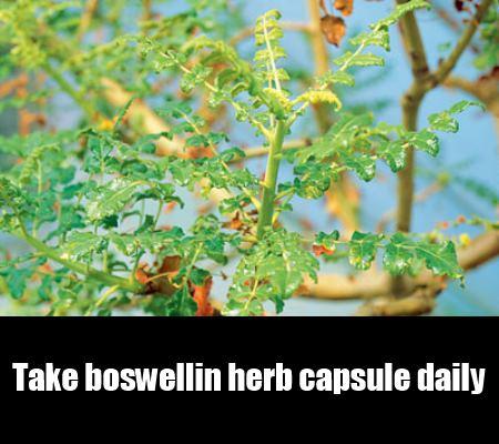 boswellin