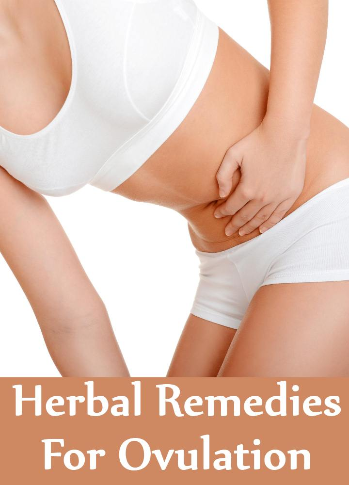 Herbal Remedies For Ovulation