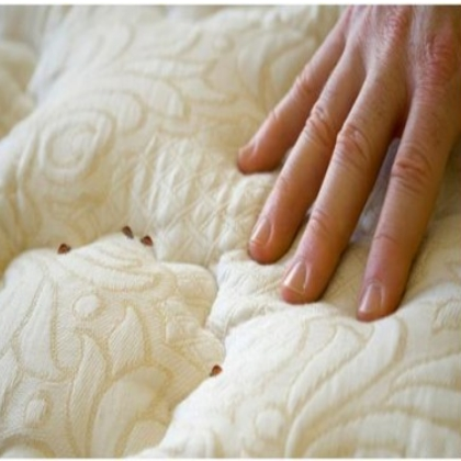 Treatments For Bed Bugs