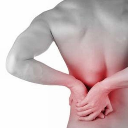 Herbal Remedies For Muscle Pain