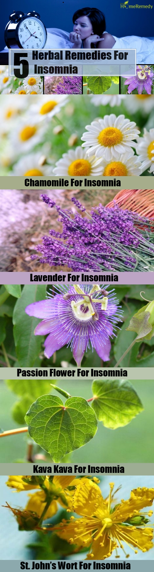 5 Herbal Remedies For Insomnia