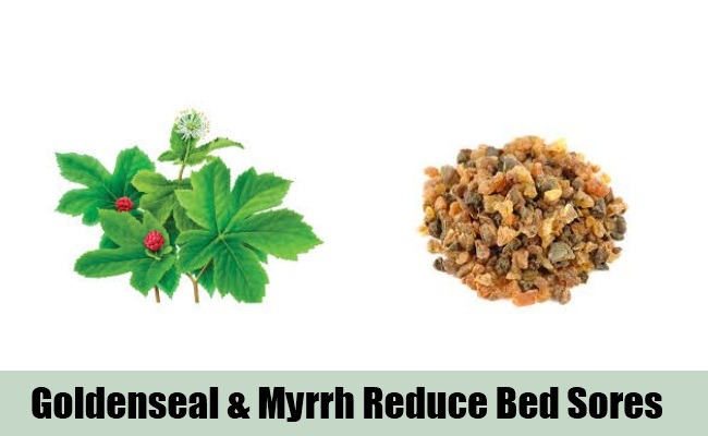 Goldenseal And Myrrh