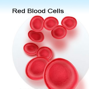 anemia as a count of RBC