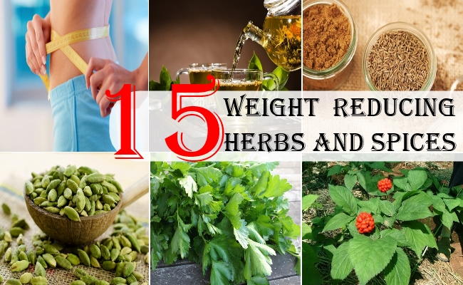 Weight  Reducing Herbs And Spices