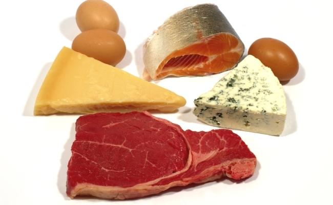 Animal Fat FOOD