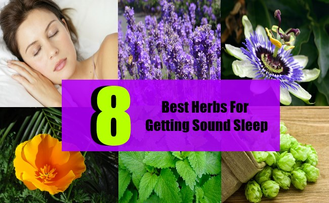 8 Best Herbs For Getting Sound Sleep