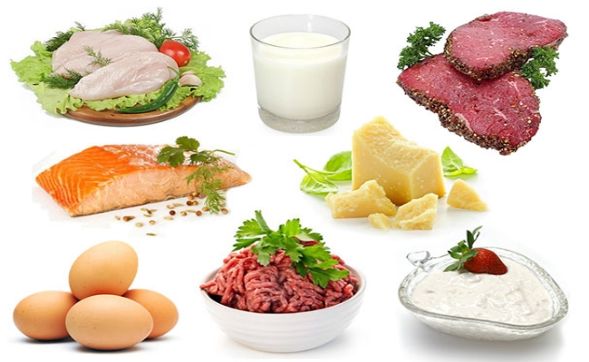 Food containing protein