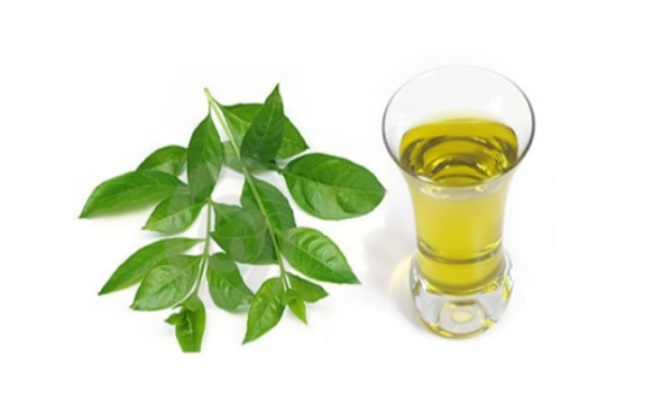 Mustard Oil And Henna Leaves
