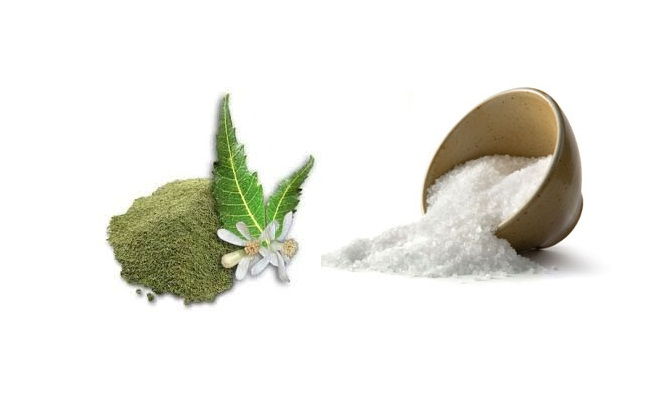 Neem Powder And Salt