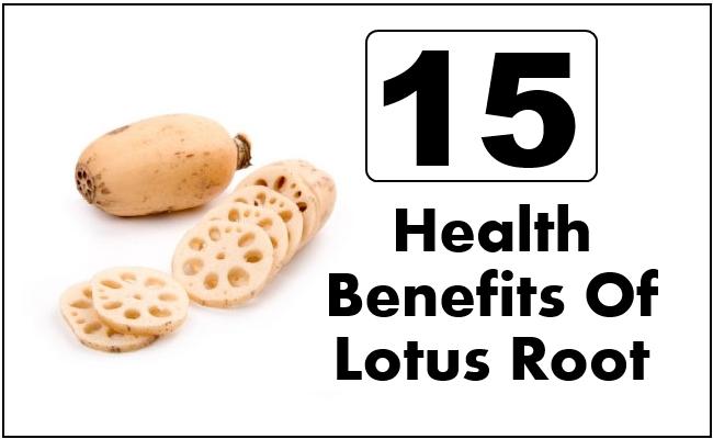 Health Benefits Of Lotus Root