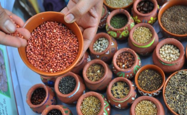 Protein Benefits Of Millets