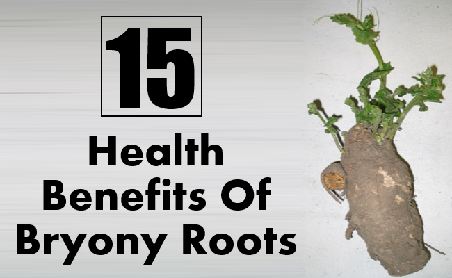 Health Benefits Of Bryony Roots
