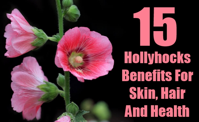 Hollyhocks Benefits For Skin, Hair And Health