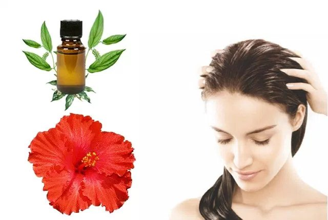 Camphor Oil And Hibiscus Mask