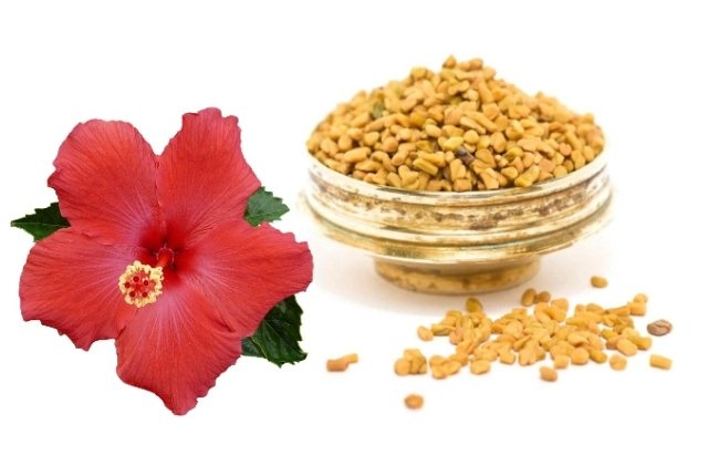 Hibiscus And Fenugreek Anti-Dandruff Hair Mask