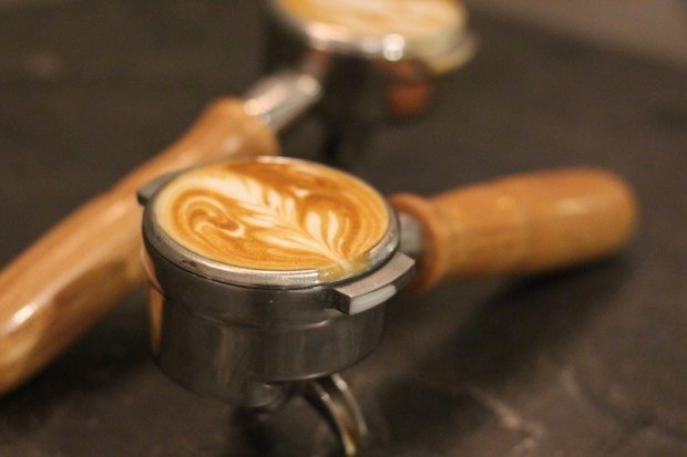Drop Coffee: 5 Things You Should Know About that Cup of Coffee