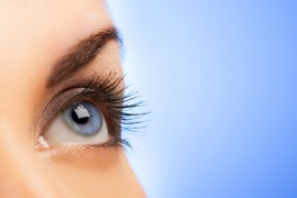 Eyelash Guide: How to Choose the Perfect Match for your Eyes
