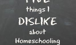 5 Things I Dislike about Homeschooling