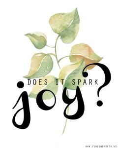 KonMari - spark joy