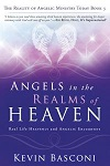 Angels in the Realms of Heaven: Real Life Heavenly and Angelic Encounters