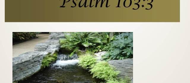 Psalm 103:3