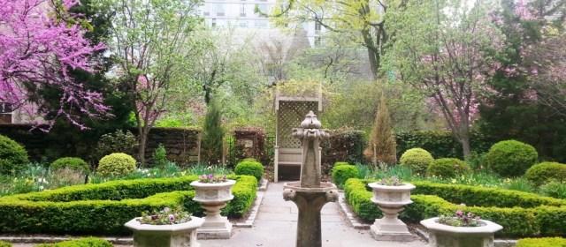 Biblical Gardens