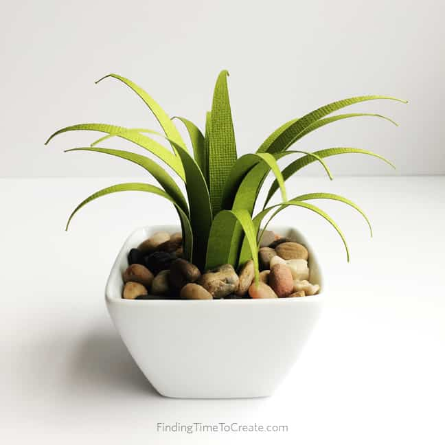 Do You Kill Your House Plants? Try a paper air plant.